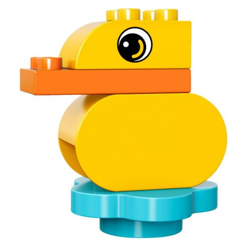 30321 Duck