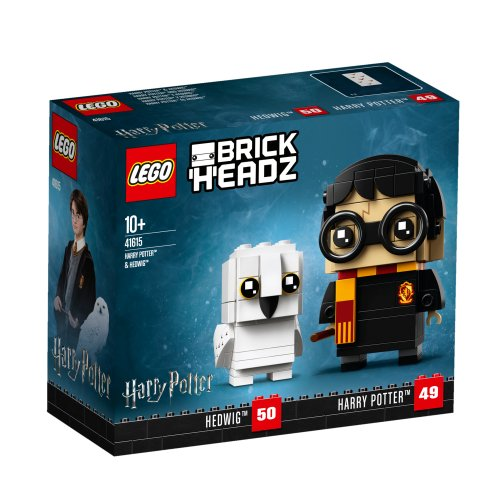 41615 Harry Potter i Hedwig