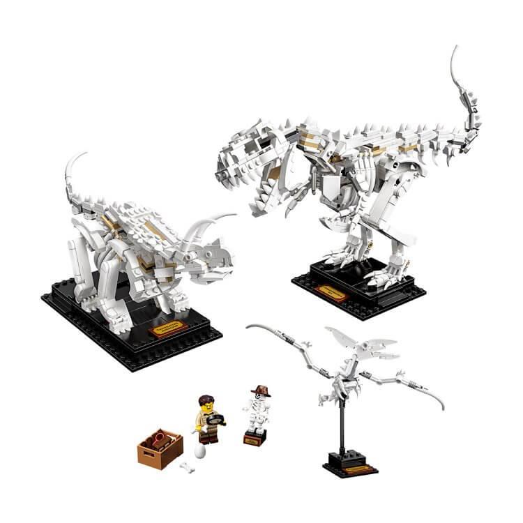 21320 Fosil dinosaurusa